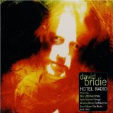 Текст клипа On a Day Like This исполнителя David Bridie